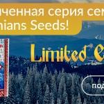 Carpathians Seeds: Limited Edition