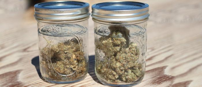 очищение конопли водой, пролечка марихуаны, улучшение качества травки